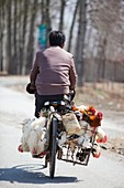 Man and chickens on a bike,China