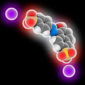 Sunset Yellow FCF molecule