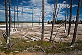Yellowstone National Park,USA
