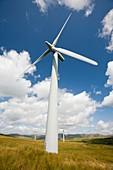 Wind turbines at Lambrigg wind farm