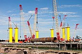 Offshore wind farm foundations