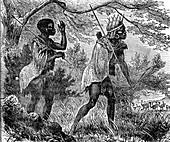 African bushmen,19th C illustration