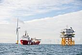 Walney Offshore Windfarm,UK
