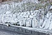 Ice coating roadside verge
