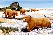 Prehistoric giant wombats,illustration