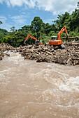River full of trees after landslid