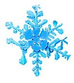 Snowflake,low-temperature SEM