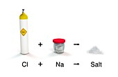 Salt from chlorine and sodium