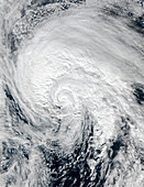 Tropical Storm Alex,January 2016