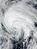 Tropical Storm Alex,January 2016