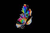Fluoxetine drug,light micrograph