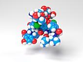 Vancomycin antibiotic molecule