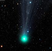 Comet C2014 Q2