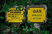 Buried gas pipeline markers