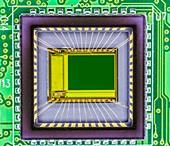 Digital camera sensor
