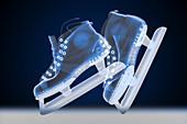 Ice skates,X-ray