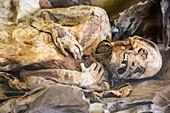 Kela,a mummified Tierra Del Fueguian