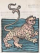 1491 Sea Lion from Hortus Sanitatis