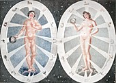 1794 Adam Eve and the Zodiac Sibly