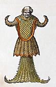 1554 Rondelet's Sea Monk Monster