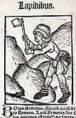 1491 Miner from Hortus Sanitatis