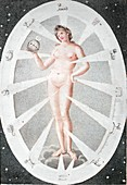 1794 Eve's Creation and the Zodiac woman