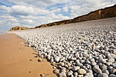 Flint pebbles on Sheringham beach,UK