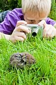 A young boy photographs a field vole