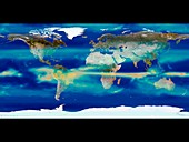 Monthly global precipitation,August