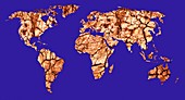 Global drought,conceptual image