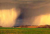 Distant view of rainfall (showers) on a field