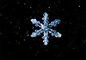 Macrophoto of snow crystals' hexagonal symmetry