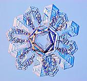 Double snowflake