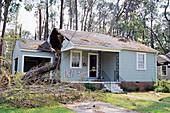 Tree on a house after hurricane Katrina
