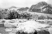 Pedersen Glacier,Alaska,in 1920