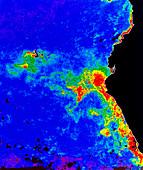 Fal-col satellite image of coastal waters (Peru)