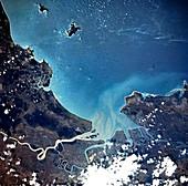 Plankton bloom off the Queensland coast