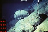 Pillow lava,deep sea vent