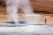 Geothermal mud pool,Iceland