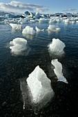 Glacial lake,Iceland