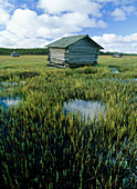 Flooded meadow with sauna hut
