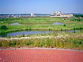 Artificial wetland habitat