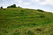 Hod hill iron age settlement