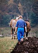 Farmer ploughing a field
