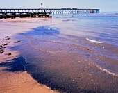 Raw sewage and coal waste discharged onto a beach