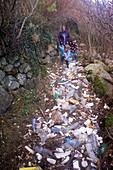 Coastal litter