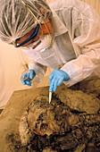 Islamic archaeology