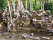 Ancient ruins,Coba,Mexico
