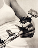 Flowers held by a woman