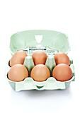 Box of six eggs